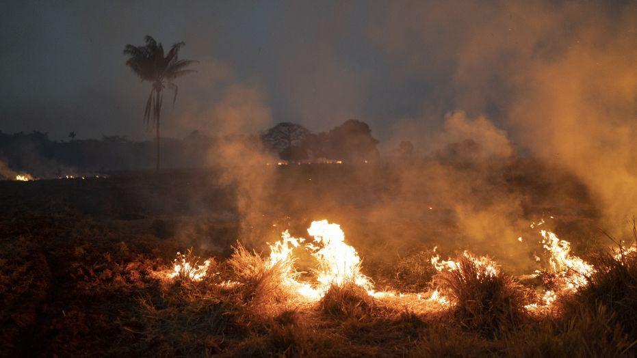 amazon yangınları ile ilgili görsel sonucu